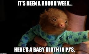 Sloth Meme Images - it s been a rough week here s a baby sloth in pj s meme