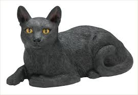 cat urn black cat urn hair