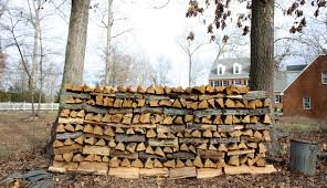 the best and worst trees for firewood hobby farms