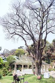 wedding arches for sale in johannesburg johannesburg wedding at shepstone gardens christopher smith