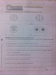 cells u0026 mitosis reinforcement pmcs science 3