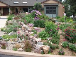 absolutely ideas rock garden designs for front yards in dire need