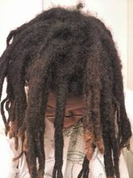 stages of dreadlocks pictures form natural dreadlocks free form locs hair 09161 free form locs