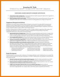 executive summary resume samples hitecauto us