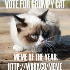 Grouchy Cat Meme - grumpy cat on twitter vote grumpy cat meme of the year on