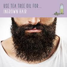 essential oil for ingrown hair tea tree oil over 70 mind boggling tea tree oil uses