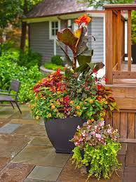 2258 best containers images on pinterest potted plants
