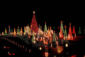 Stone Zoo Lights by Drive Through The Lights Of Life Display