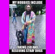 Hippie Memes - coolest hippie memes new hippy memes kayak wallpaper