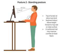 Optimal Desk Height What Is The Best Healthy Chair For Computer Desk Should I Buy