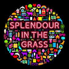 splendour in the grass performance event venue yelgun new