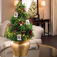 live decorated tabletop trees from jackson perkins