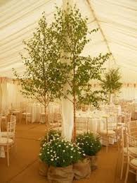 palmbrokers event props and plants hire portfolio