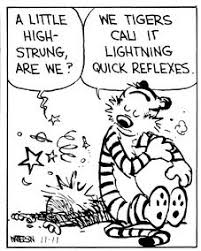 915 best calvin and hobbes images on comic strips