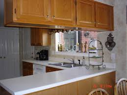Remove Kitchen Cabinet What Color Compliments Honey Oak Cabinets