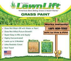 lawnlift america u0027s best selling grass paint