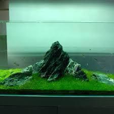 amano aquascape nature aquariums and aquascaping ideas by takashi amano