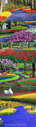 Types Of Botanical Gardens by Best 25 Most Beautiful Gardens Ideas On Pinterest Palace Garden