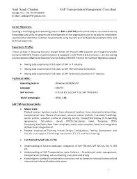 sap crm technical consultant resume amit sap tm functional resume