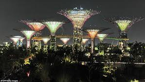 puts our lights to shame mesmerising forest of solar