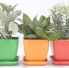 indoor herb kit garden gifts urban farmer seeds