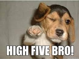 High Five Meme - high five puppy weknowmemes generator