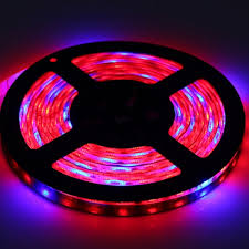 red and blue led grow lights ultrafire led grow l 300 led smd5050 red blue light grow led