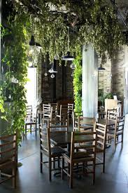 Small Indoor Trees by Indoor Cafe Table And Chair U2013 Adocumparone Com