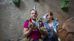 new seaquest interactive aquarium opens in layton hill mall