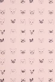 halloween cat wallpaper best 10 cat wallpaper ideas on pinterest iphone wallpaper cat