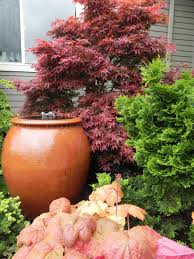 gorgeous container garden and water feature ideas hgtv