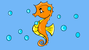 how to draw seahorse coloring pages for kids drawing and
