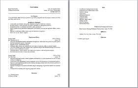 dsi security officer cover letter