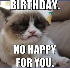 Funny Animal Birthday Memes - new best happy birthday memes for her latest collection