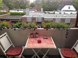 winterharte pflanzen balkon tessimo s balkongeschichten balkonkästen winterhart bepflanzen