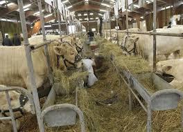 chambre d agriculture de la nievre compliqué d embaucher des apprentis agriculteurs dans la nièvre