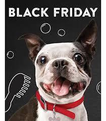 pet smart black friday pet services black dog wearing pineapple petsmart bandana