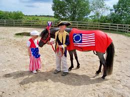 Halloween Costumes Horse 19 Horse Costumes Images Animal Costumes