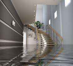know what to do in case of a flood part 1 got mold indoor air