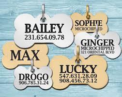 Custom Gold Dog Tags Custom Dog Tags Etsy