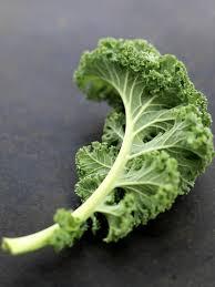 comment cuisiner le kale kale le chou qui a rendu fous les américains