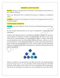 chapter notes heredity and evolution class 10 science dronstudy com