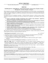 sample resume career summary best solutions of audit analyst sample resume also job summary best solutions of audit analyst sample resume also job summary