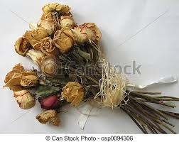 dried roses dried bouquet closeup of a dried roses arrangement a