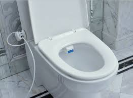 Portable Bidet Aliexpress Com Buy Toilet Seat Bidet Luxurious And Hygienic Eco