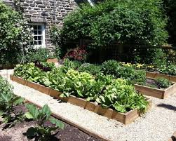 modern vegetable garden design with raised vegetable garden design