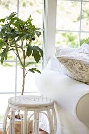Summer Decor 1648 Best Spring And Summer Decor Ideas Images On Pinterest Home