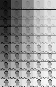 fifty shades of gray nascar