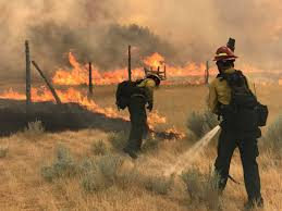 Colorado Wildfire Status by As Western Wildfires Blaze Scientists Turn To Satellites For Help