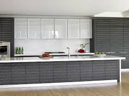 Glass Cabinets In Kitchen Frosted Glass Kitchen Cabinet Doors